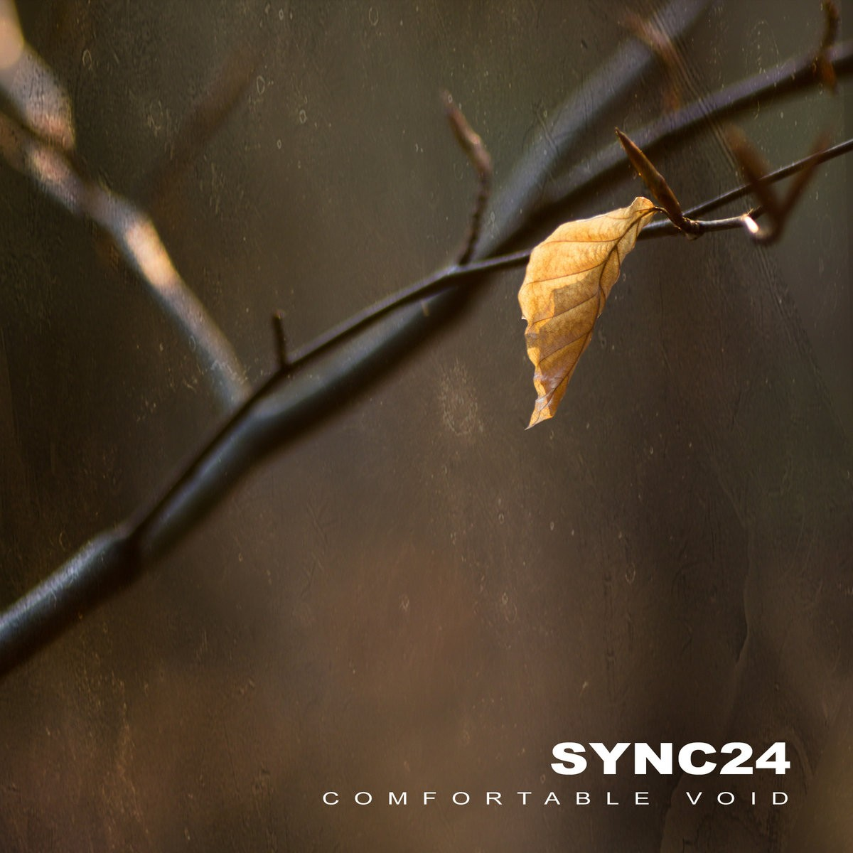 Sidereal - SYNC24 - Comfortable Void (Remastered)
