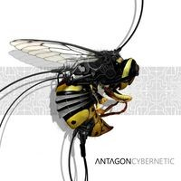 2TO6 Records - ANTAGON - Cybernetic