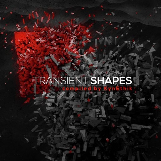 24-7 Records - .Various - Transient Shapes