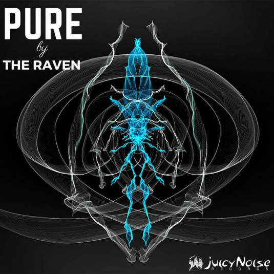 Juicy Noise Records - THE RAVE COMMISSION - Pure