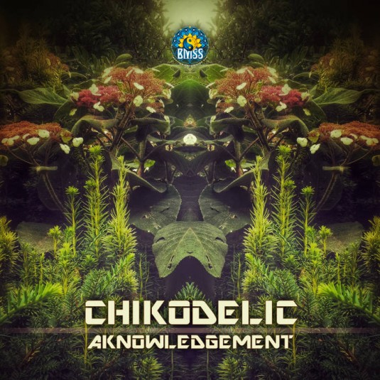 BMSS Records - CHICODELIC - Aknowledgement