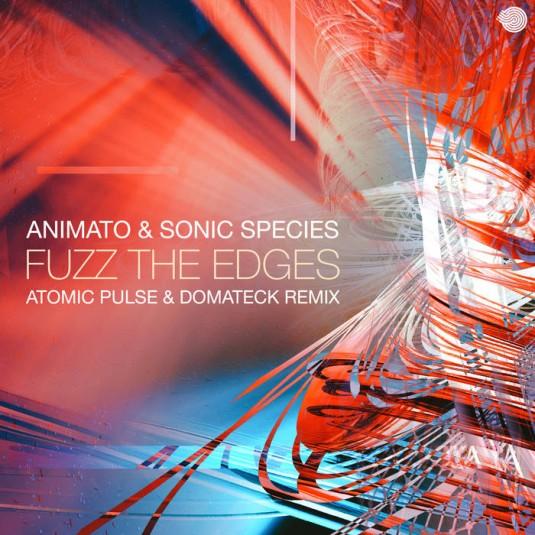 Iboga Records - ANIMATO & SONIC SPECIES - Fuzz the Edges
