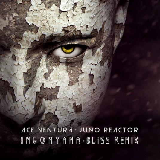 Iboga Records - ACE VENTURA, JUNO REACTOR - Ingonyama