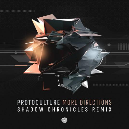 Iboga Records - PROTOCULTURE - More Directions
