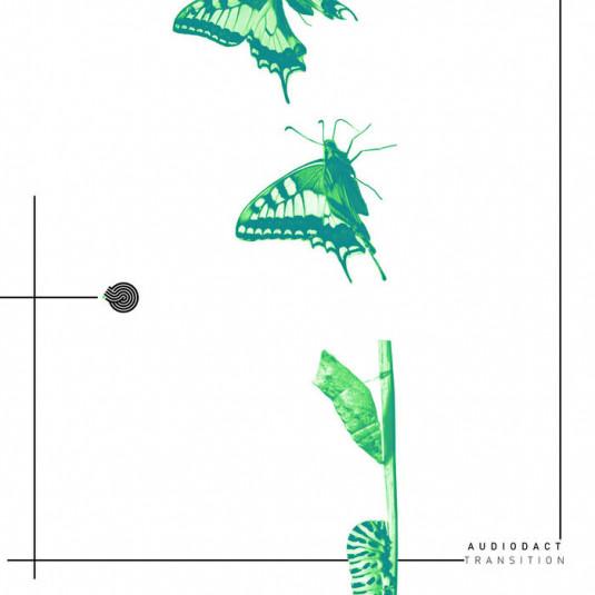 Iboga Records - AUDIODACT - Transition