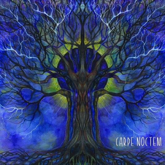 Suntrip Records - .Various - Carpe Noctem
