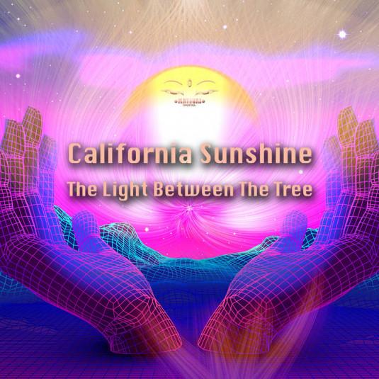 Matsuri Digital - CALIFORNIA SUNSHINE - The Light Between the Tree