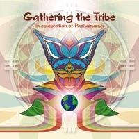 Interchill Records - .Various - Gathering The Tribe