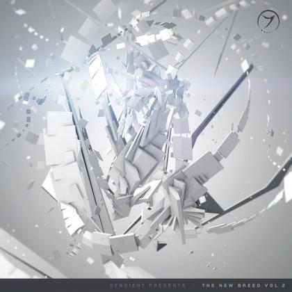 Zenon Records - .Various - New Breed Vol 2