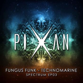 Pixan Recordings - FUNGUS FUNK - Technomarine