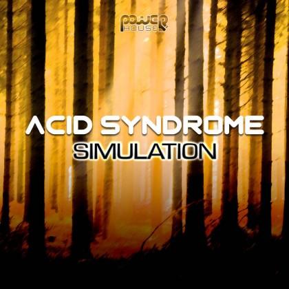 Power House - ACID SYNDROME - Simulation (pwrep139)