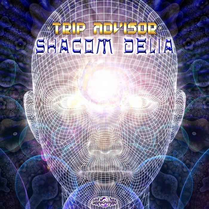 Geomagnetic.tv - SHACOM DELIA - Tripadvisor