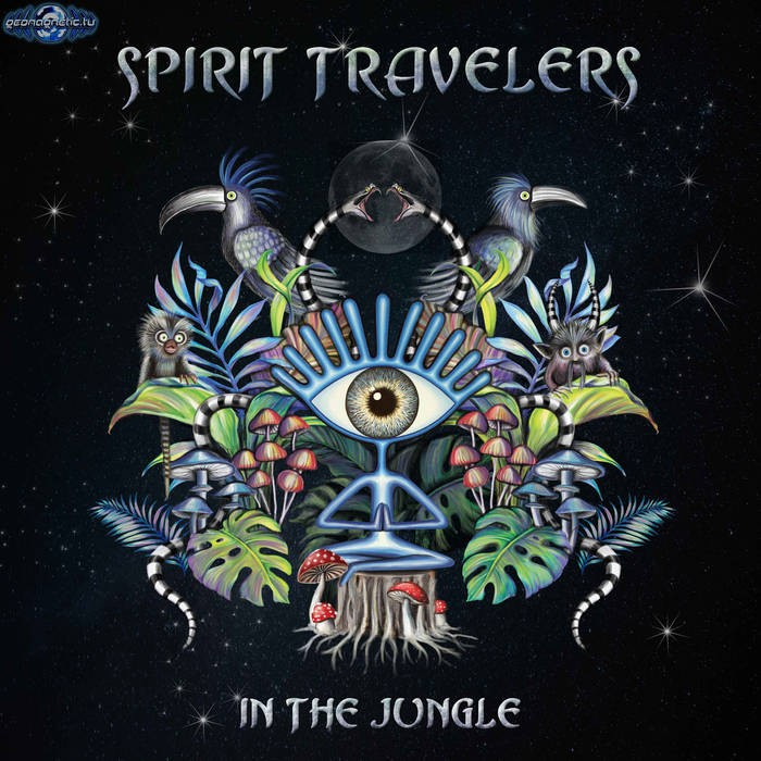 Geomagnetic.tv - SPIRIT TRAVELLER - In the Jungle