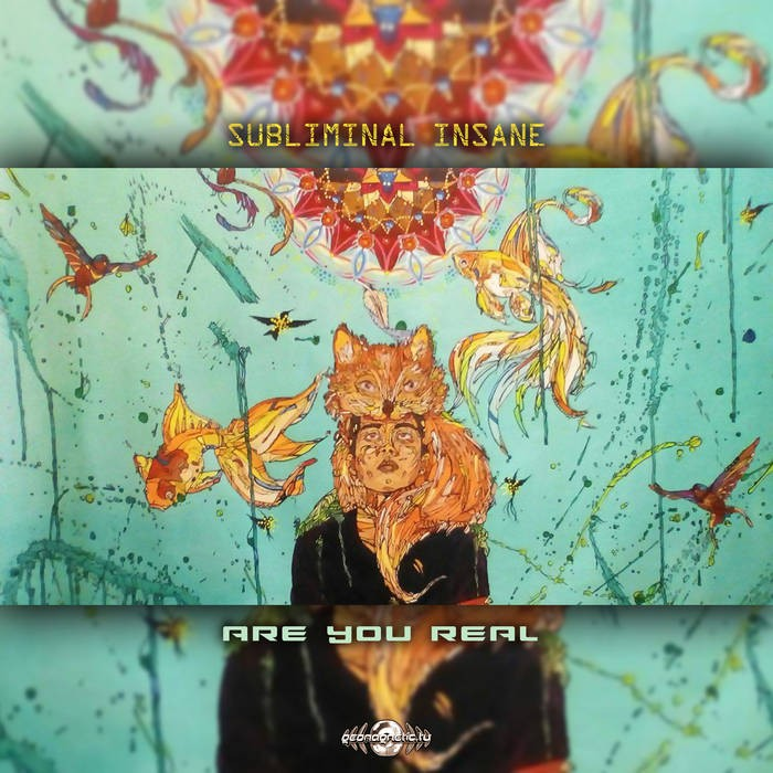 Geomagnetic.tv - SUBLIMINAL INSANE - Are you Real
