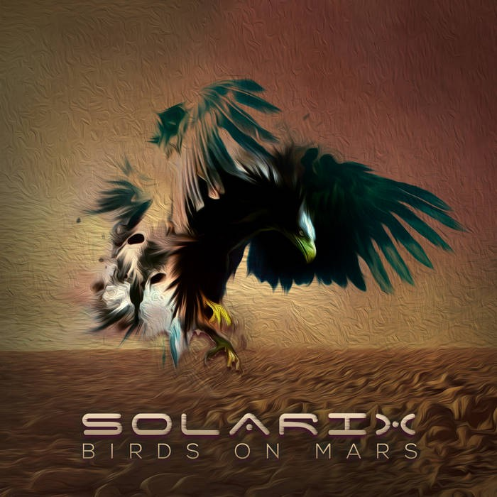 Dacru Records - SOLARIX - Birds on Mars