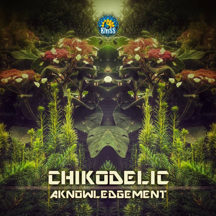 BMSS Records - CHICODELIC - Acknowledgment