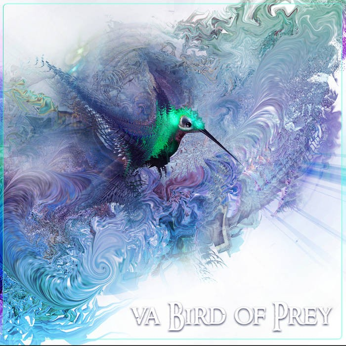 Space Baby Records - .Various - Bird of Prey