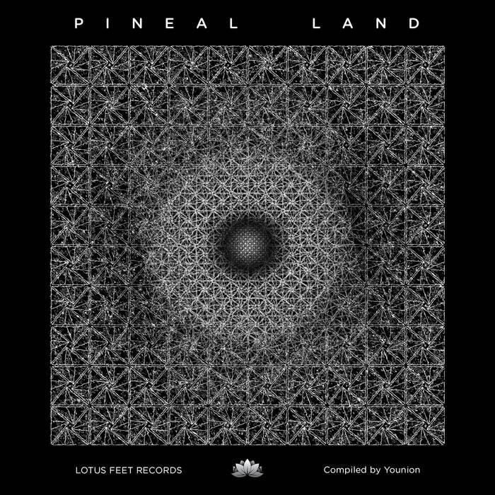Lotus Feet Records - .Various - Pineal Land