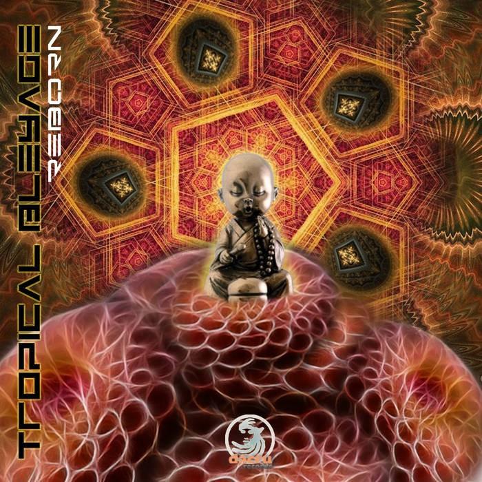 Dacru Records - TROPICAL BLEYAGE - Reborn