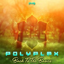 Power House - POLYPLEX - Back To The Basics