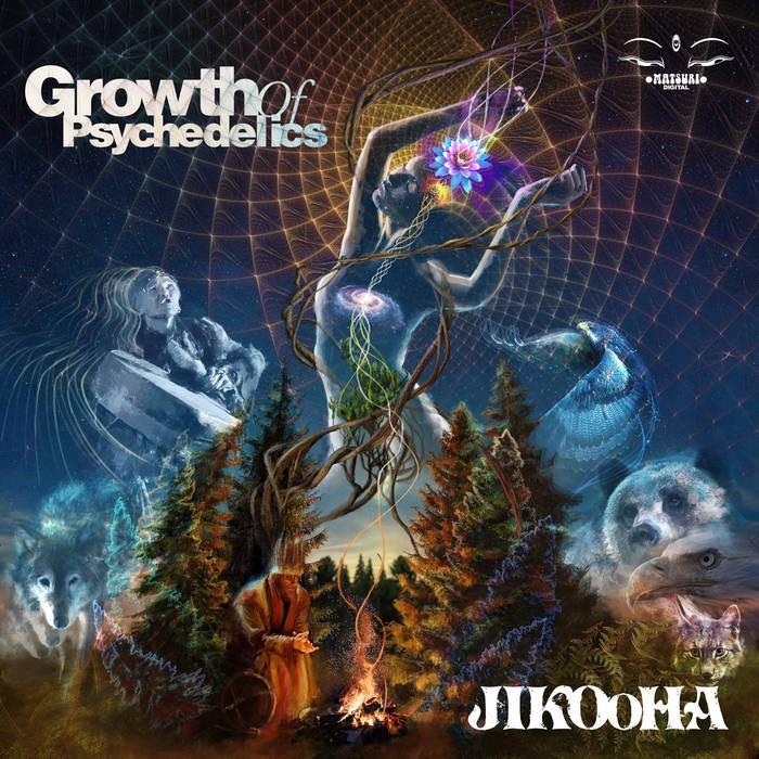 Matsuri Digital - JIKOOHA - Growth of Psychedelics