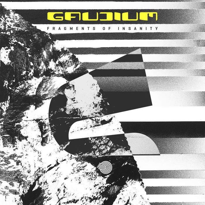 Iboga Records - GAUDIUM - Fragments of Insanity