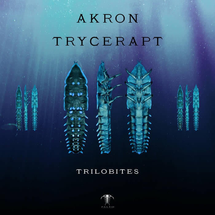 paleo - AKRON, TRYCERAPT - Trilobites