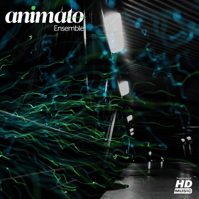 Iboga Records - ANIMATO - Ensemble