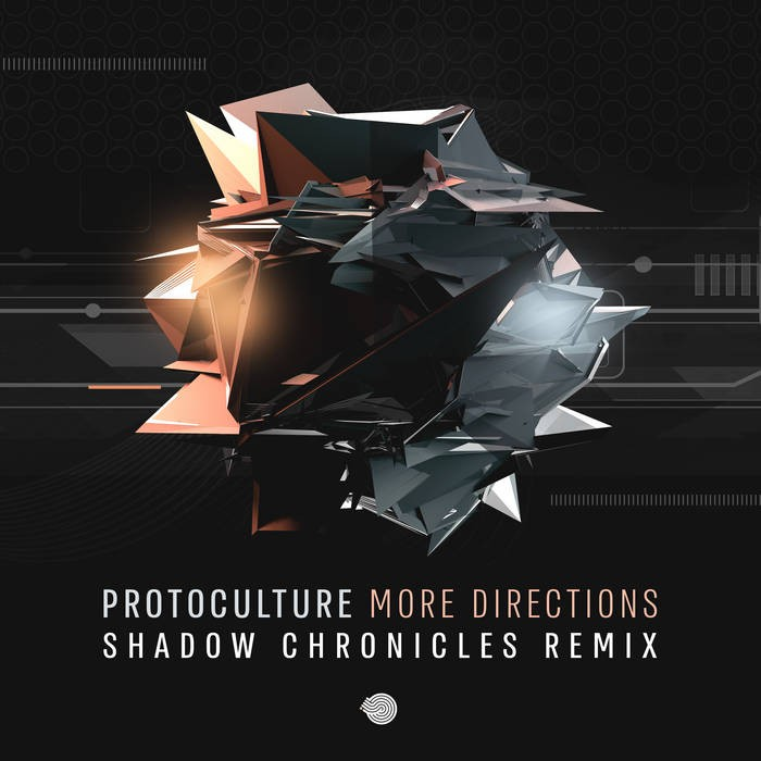 Iboga Records - PROTOCULTURE - More Directions