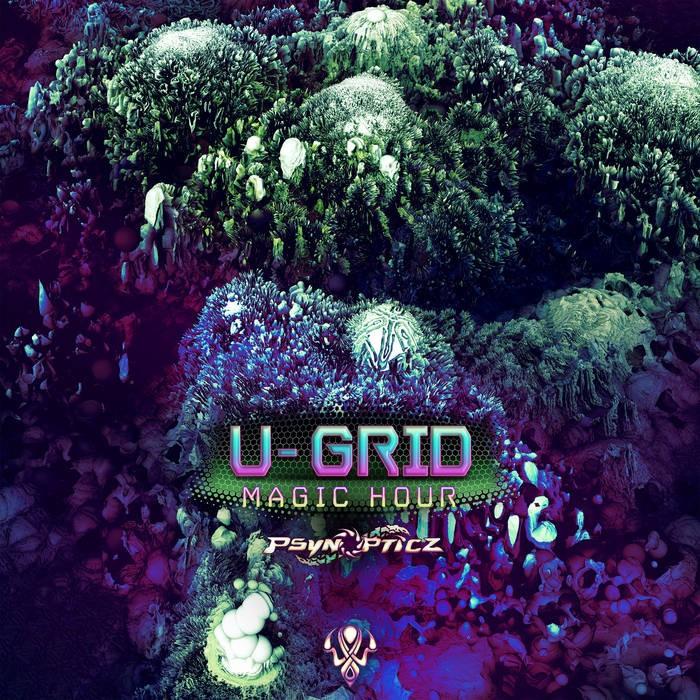 Psynopticz Records - U-GRID - Magic Hour