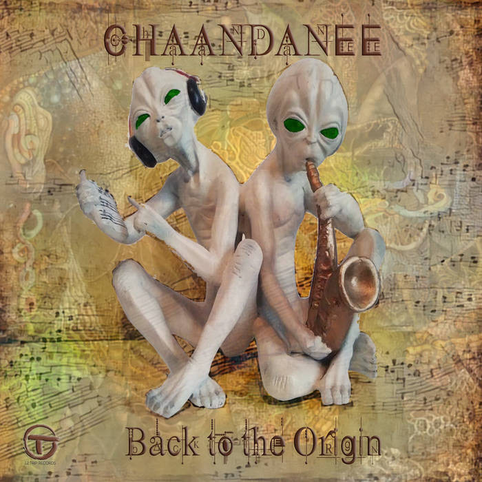 1.2. Trip Records - CHAANDANEE - Back to the Origin