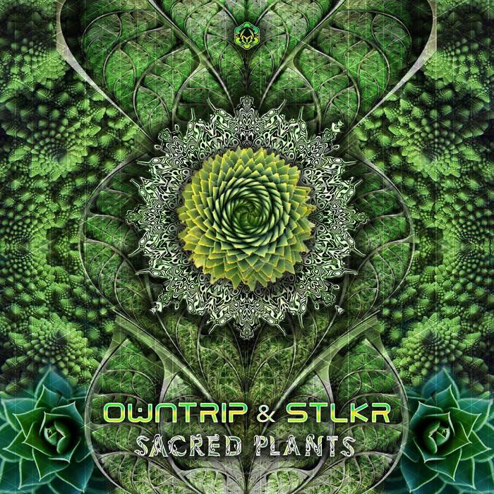 Maharetta Records - OWNTRIP, STLKR - SACRED PLANTS