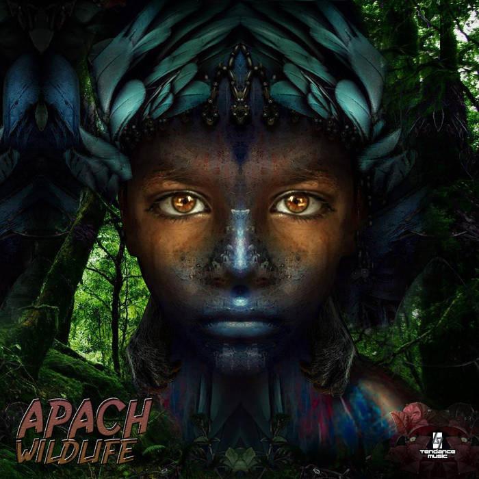 Tendance Music - APACH - Wildlife