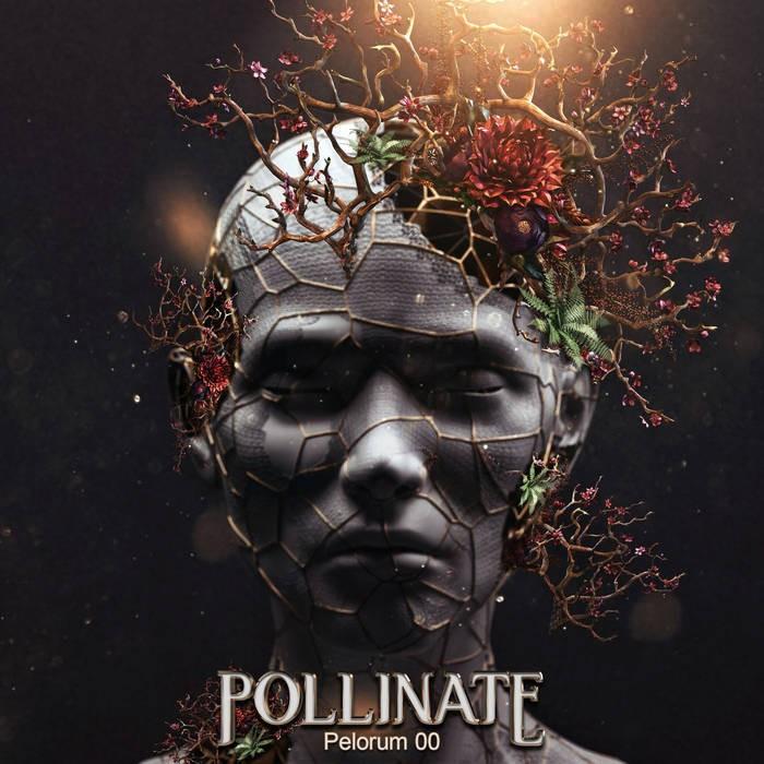 pelorum records - .Various - Pollinate