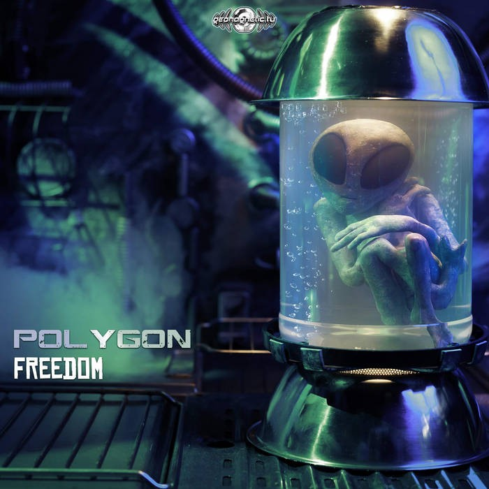 Geomagnetic.tv - POLYGON - Freedom