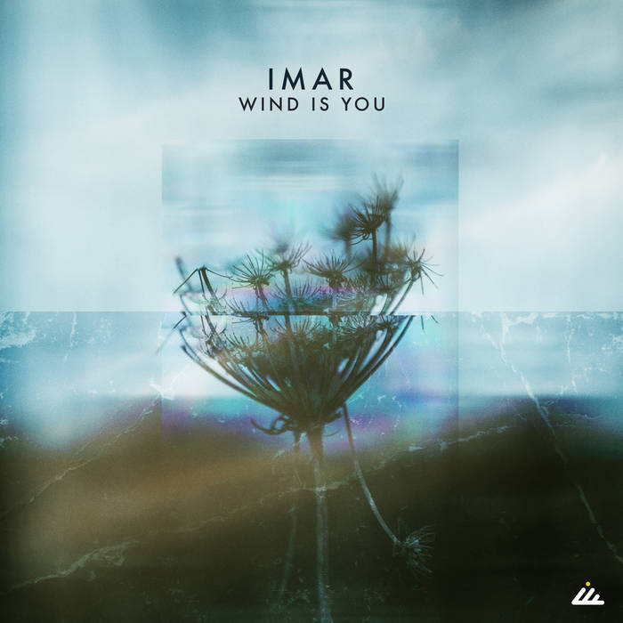 IBOGATECH - IMAR - Wind Is You