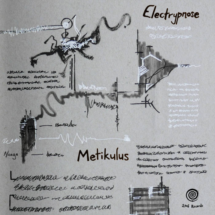 2TO6 Records - ELECTRYPNOSE - Metikulus