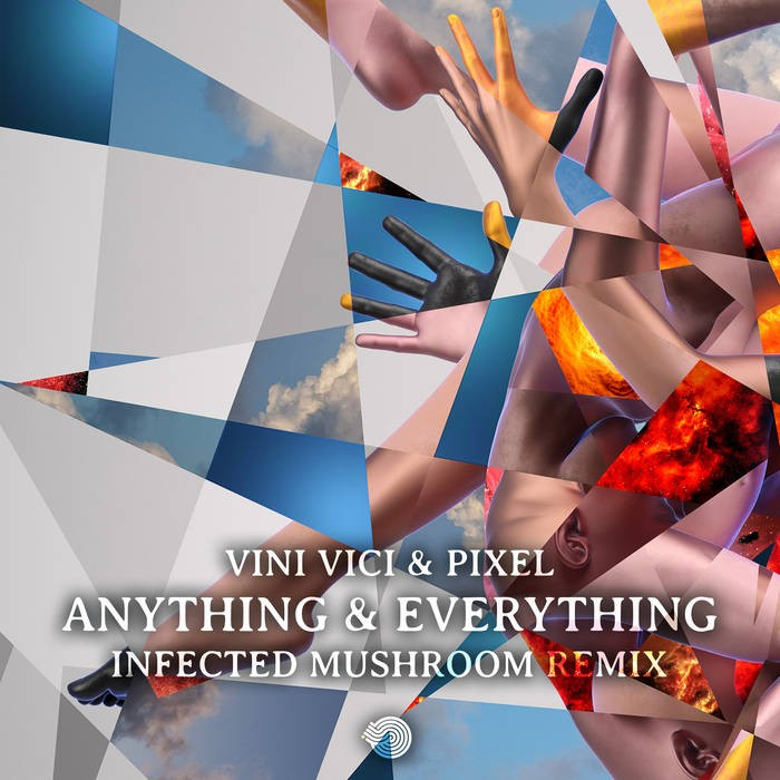 Iboga Records - VINI VICI, PIXEL - Anything & Everything
