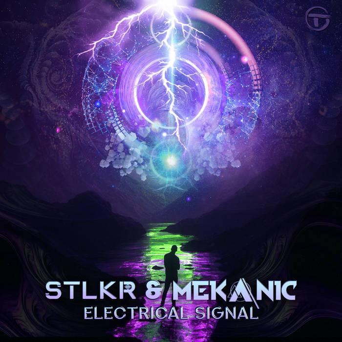 1.2. Trip Records - STLKR, MEKANIC - Electrical Signal