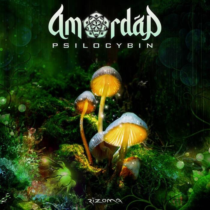 Rizoma Records - AMORDAD - Psilocybin