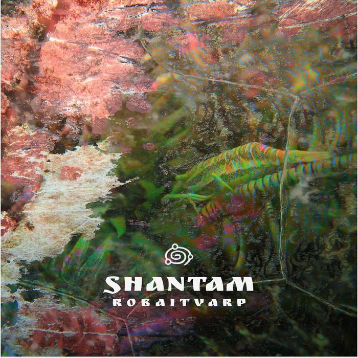 Orbita Parvati - SHANTAM - RobaitVarp