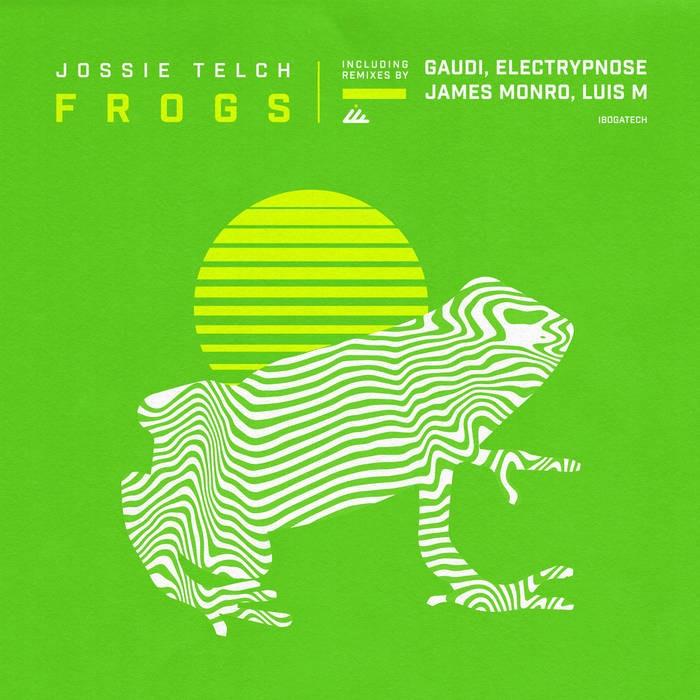 IBOGATECH - JOSSIE TELCH - Frogs