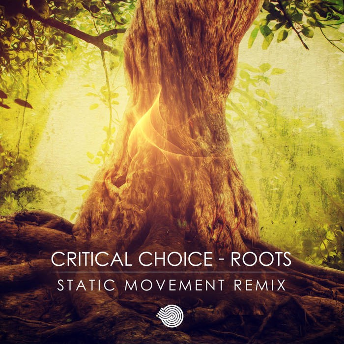 Iboga Records - CRITICAL CHOICE - Roots