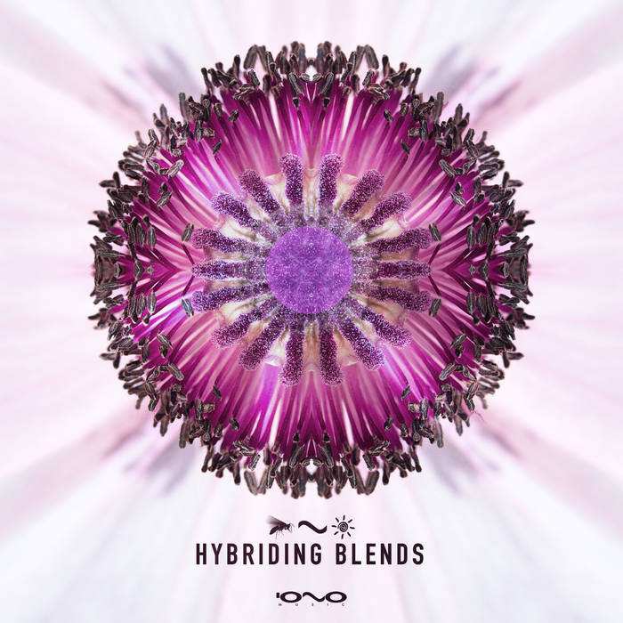 Iono Music - .Various - Hybriding Blends