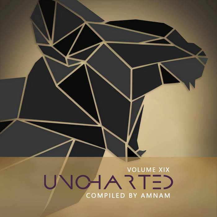 Dacru Records - .Various - Uncharted Vol.19 compiled by AmNam