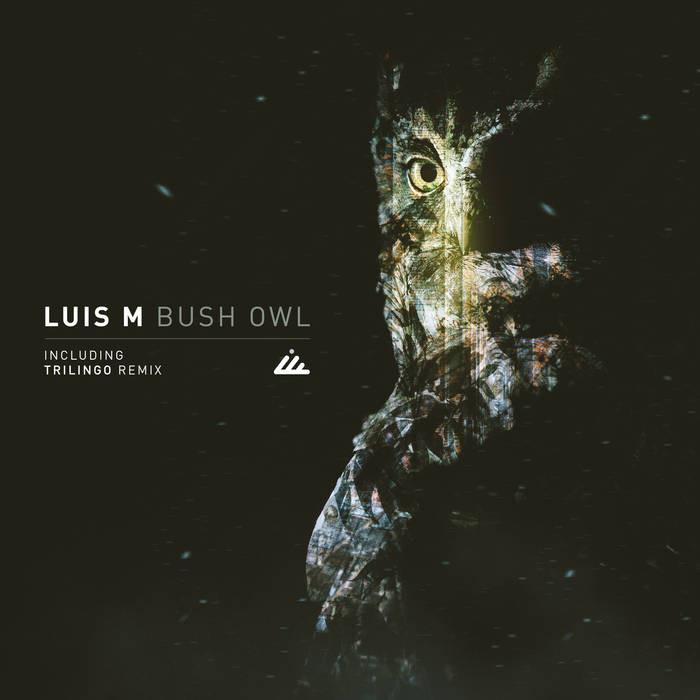 IBOGATECH - LUIS M - Bush Owl