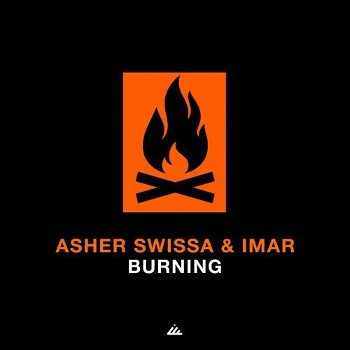 IBOGATECH - ASHER SWISSA, IMAR - Burning