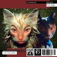 Psy Harmonics - LUMUKANDA - Banteer