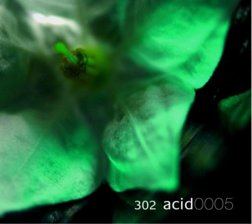 Em:t Records - 302 ACID - em:t 0005