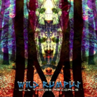 Wildthings Records - .Various - Wild Rumpus DG